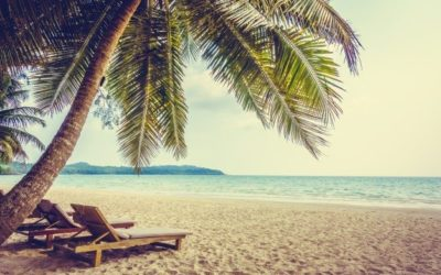 #ParadisePapers – Ecolo-Groen exige que la majorité fédérale et les administrateurs s'expliquent devant le Parlement sur les montages offshore de la société SBIE